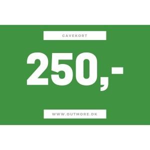 Image of   250 kr gavekort